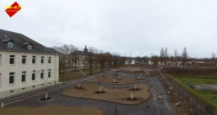 SW-N- Carus Allee